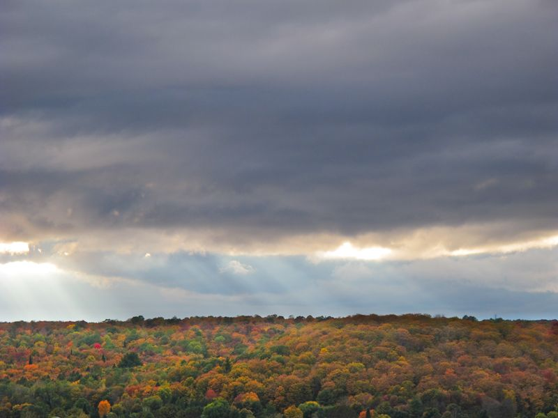 trees colours autumn sky clouds sunset Minden Onat