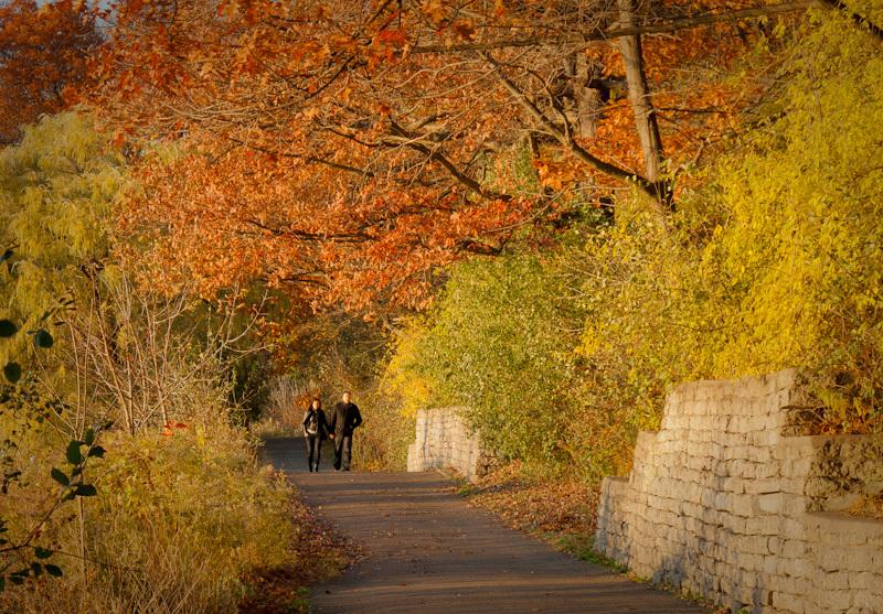 High Park, Autumn, Toronto, couple, colors, leaves