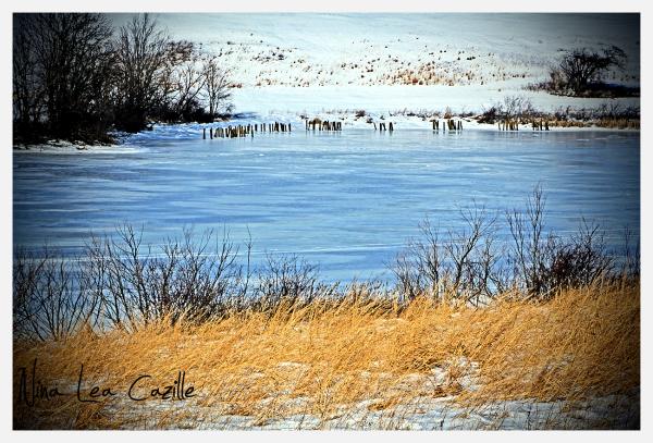 Marsh Creek Frozen Over
