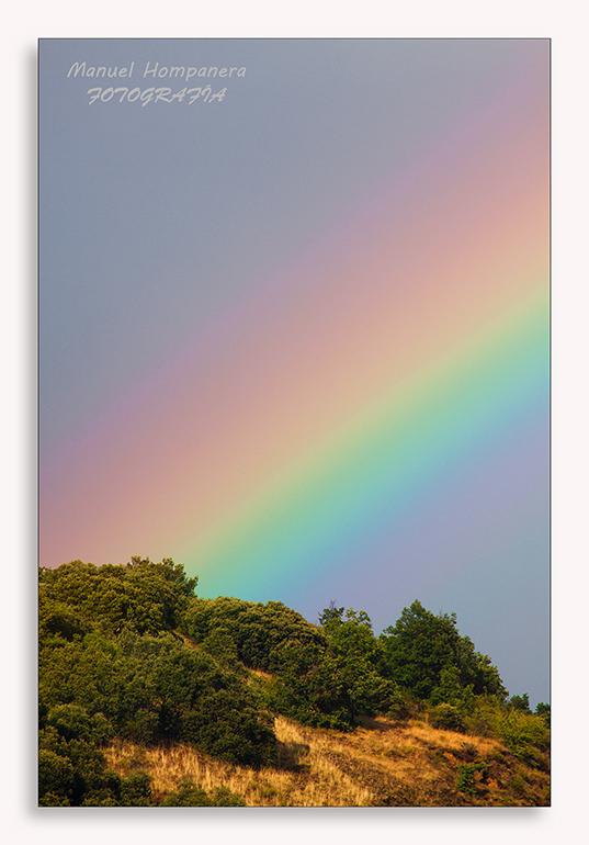 ...Y el cielo se llenó de colores