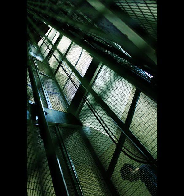 La cage (1)