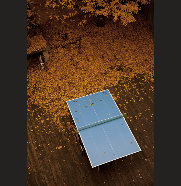 automne ping pong ivry port