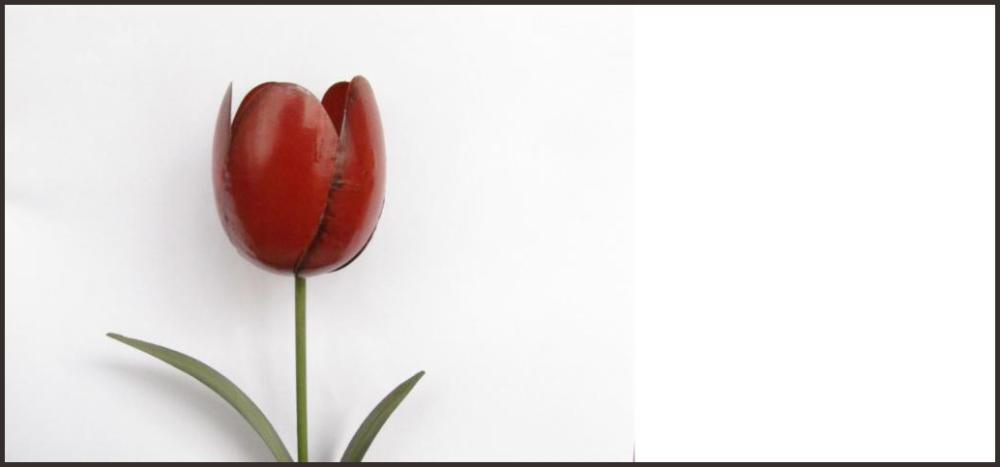 Solo una Flor