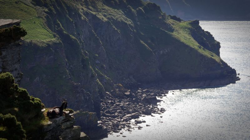 valley of the rocks, lynton, devon