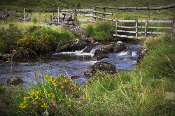 west dart river, dartmoor n.p., devon