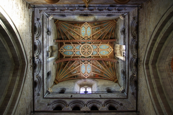 ceiling of st. davids cathedral, st. davids, wales