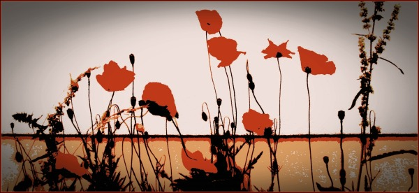 silly tuesday, posterised poppies, wallflowers