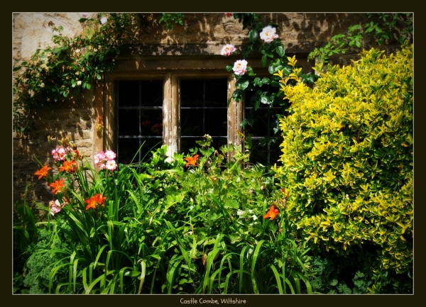 england, wiltshire, castle combe, window, flowers