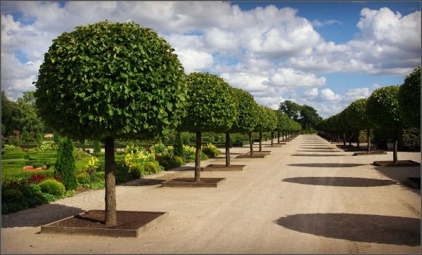 baltic states, latvia, rundāle palace, garden