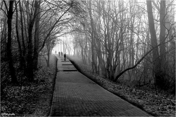 A journey to uncertain destination