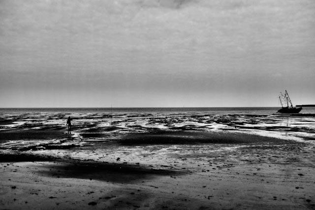 L'équilibre des marées