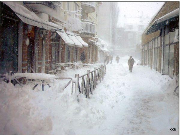 Swedish winter, March 2008