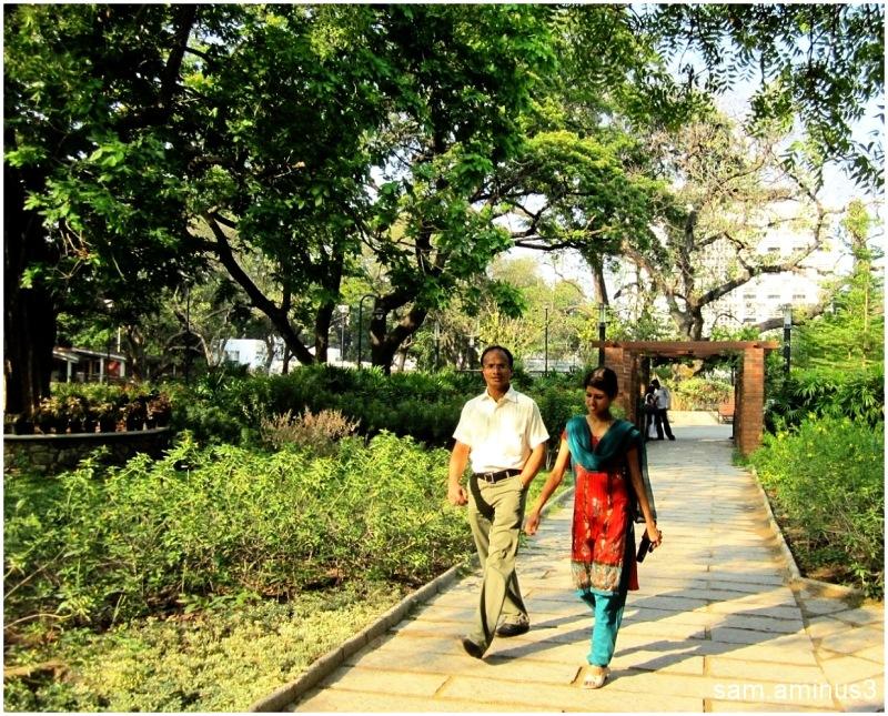Semmozhi Poonga Chennai