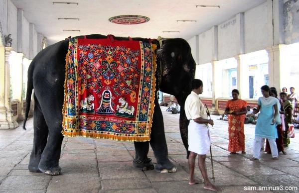 Thirukkadaiyur Temple