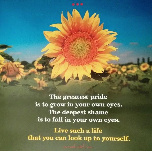 The Greatest Pride