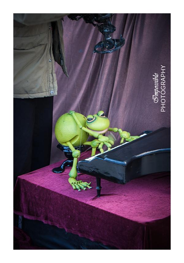 Pianist Frog