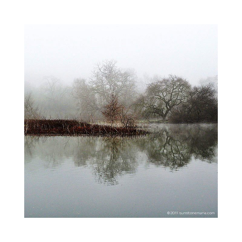 { one foggy morning III }