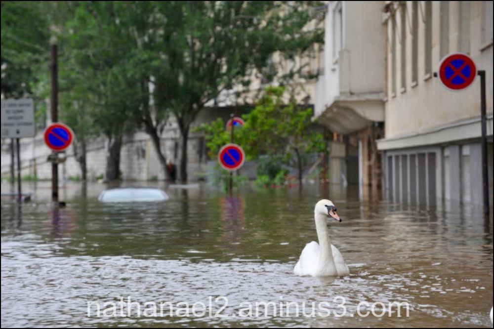 Keep flood...
