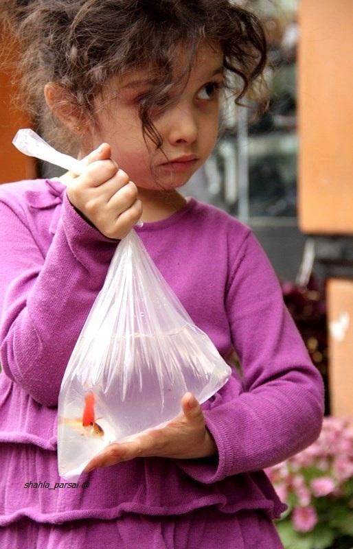 ماهی کوچک من ...