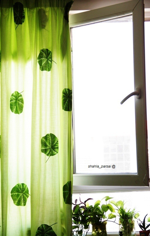 خونه باید سبز باشه ...