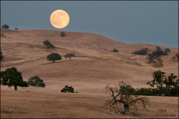 Hollister Moonrise