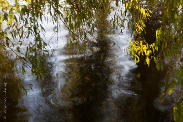 wind, water, motion