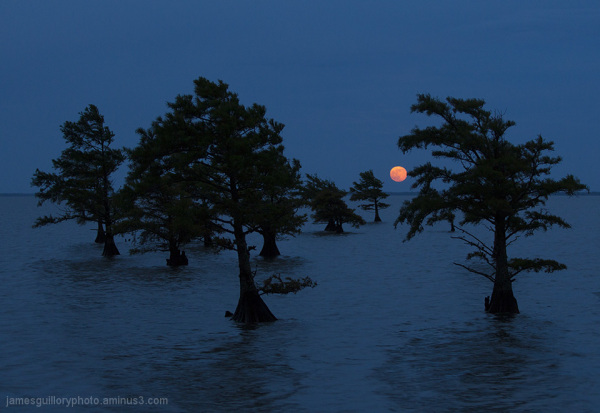 full moon, lake mattamuskeet, north carolina