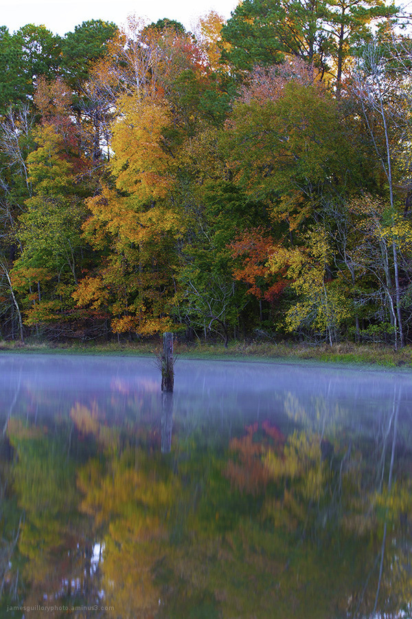 fall color, reflections, garner, north carolina