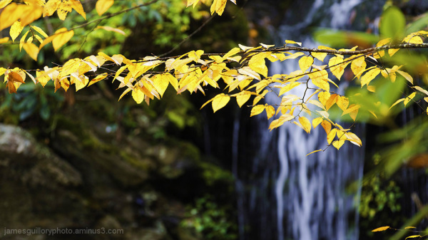 hidden falls, fall color, hanging rock state park