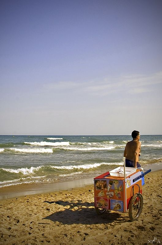 Le chouchou des plages