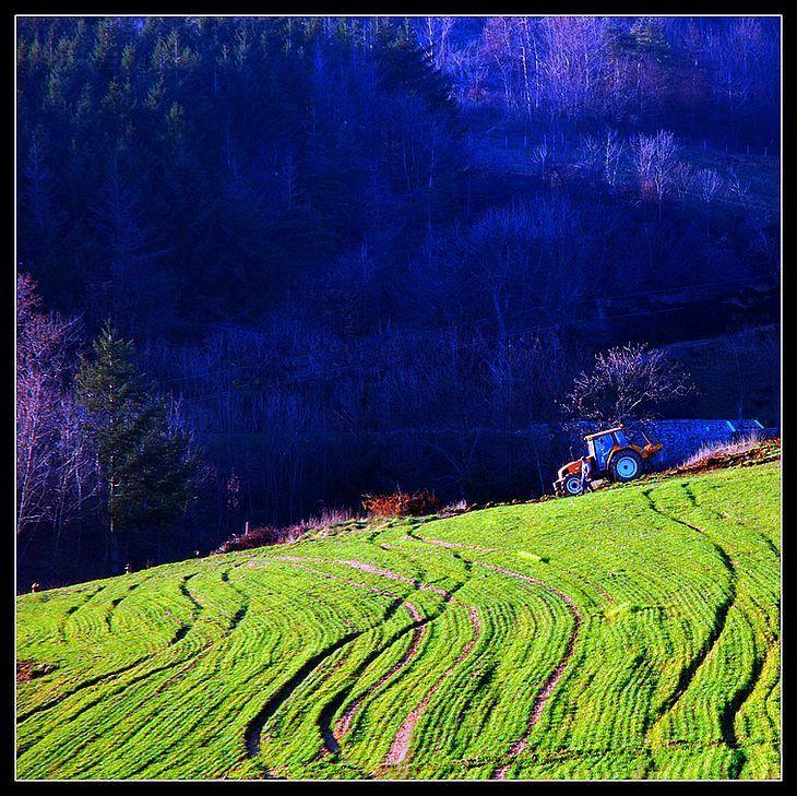 Un tracteur au travail dans un champ