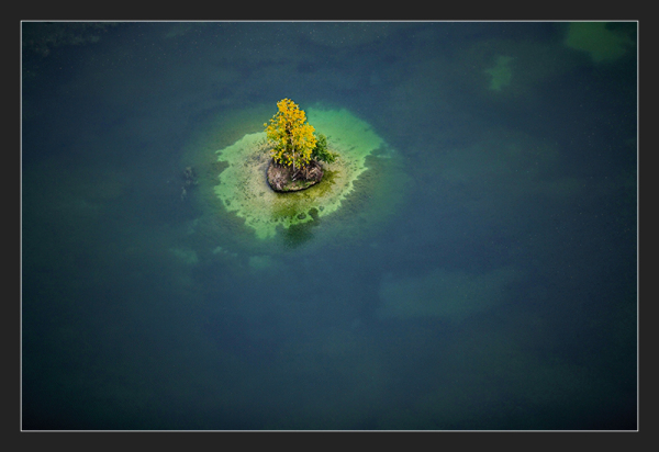 Lonely tree from above on small island, France