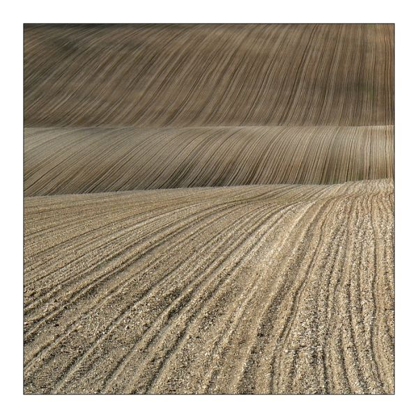 fields lines champagne ardenne