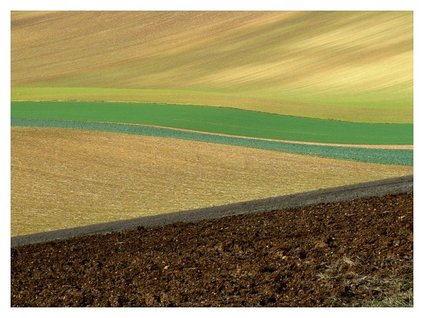 rural abstract...