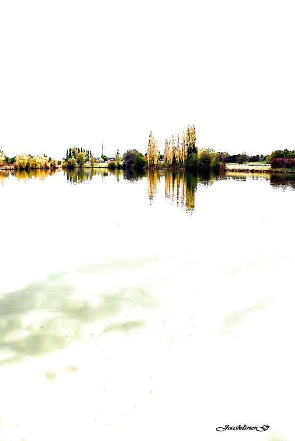 L'étang aux mille couleurs ....
