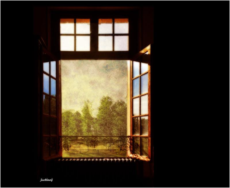 Fenêtre sur cour ...