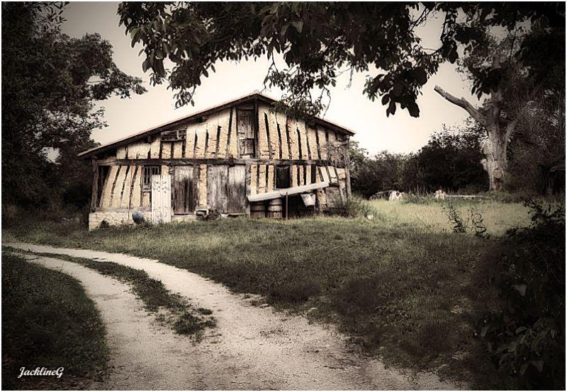La vieille ferme Landaise ...