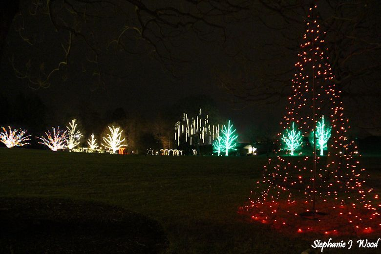 Christmas at Longwood Gardens by night