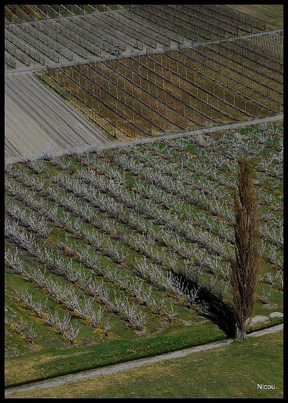 Charrat Valais Suisse
