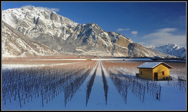 Chamoson Valais -suisse