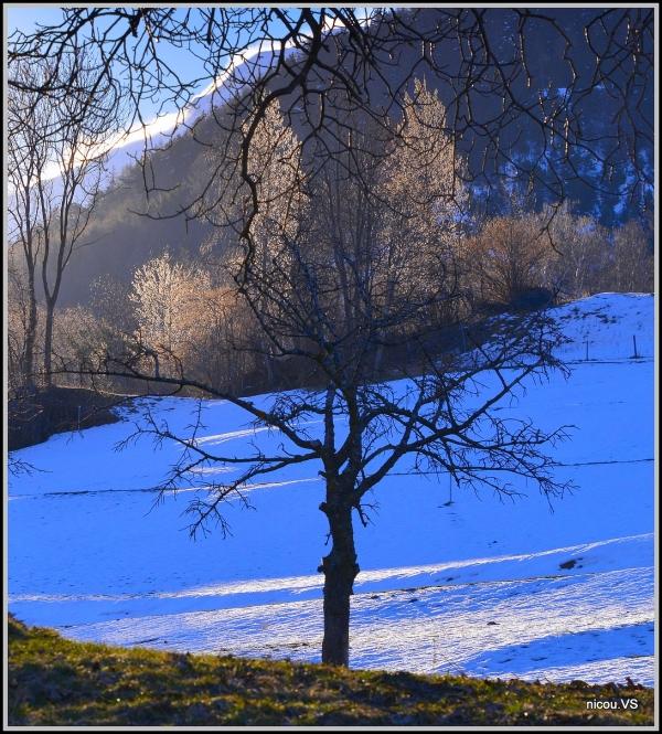 Gliis Valais Suisse
