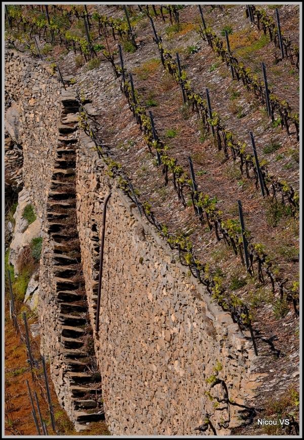 Uvier Valais Suisse