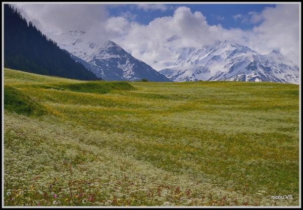 Chandonne Valais Suisse