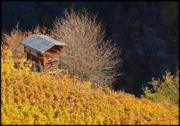 Suisse Valais Cor