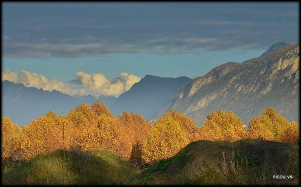 Suisse Aproz Valais