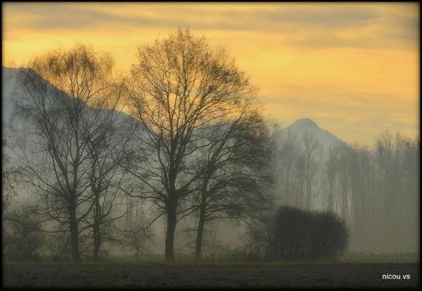 Suisse Vaud Novielle
