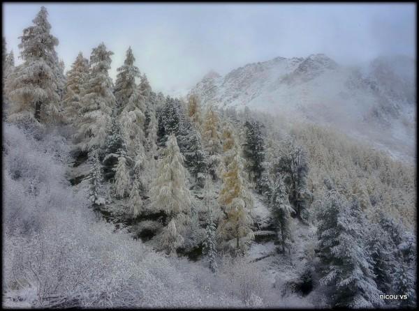 Suisse Valais Nendaz