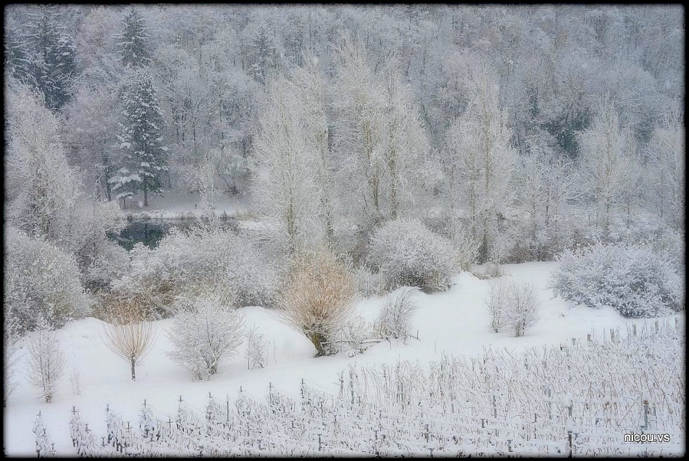 Suisse Valais Sion