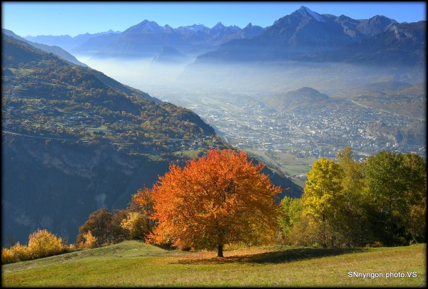 Suisse Valais Nay
