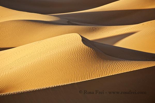 Majestic Sahara sand dunes